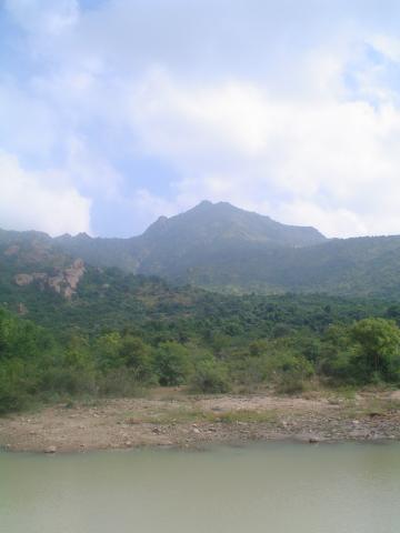 arunachala-pradakshina-2-a